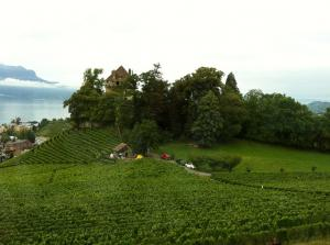 Wine Tour With Wine Tasting In The Lavaux